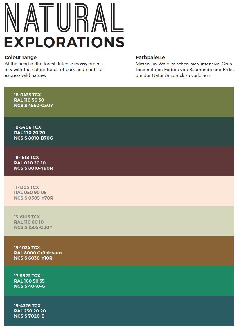 natural-exploration-colour-palette