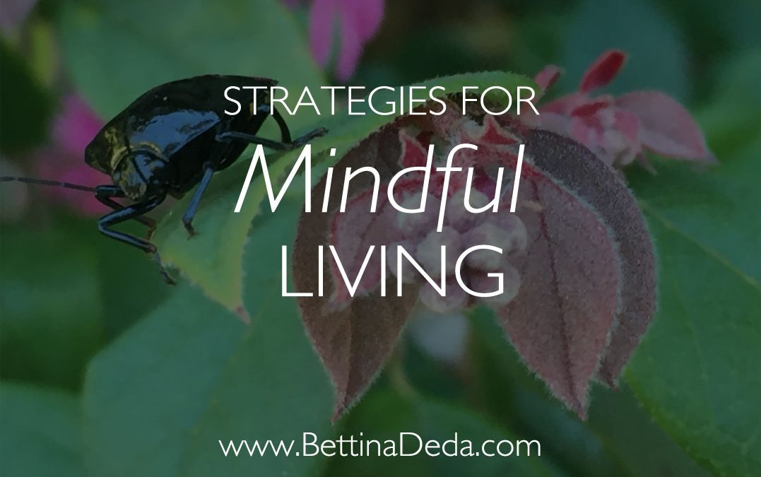 Book Tip: Mindful Living Strategies